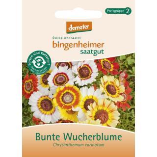 Bunte Wucherblume